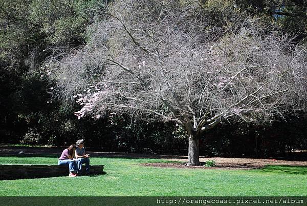 Descanso Gardens 029