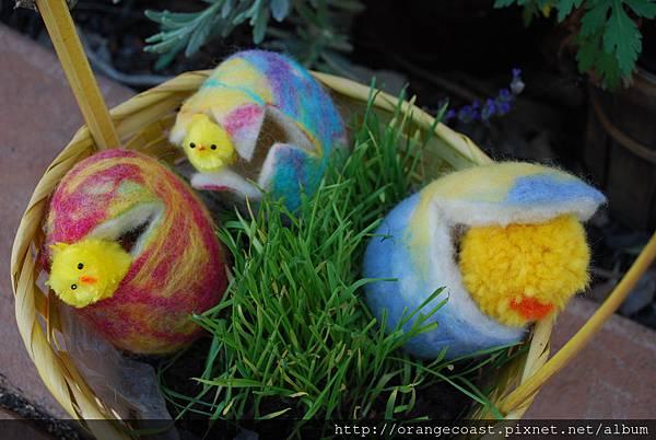 Egg Hunting 2014-04-28 002