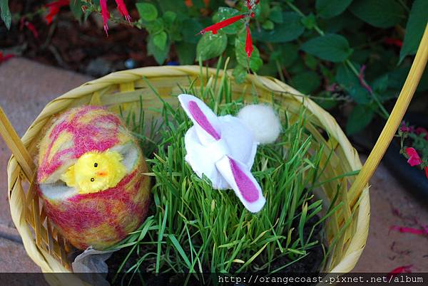 Egg Hunting 2014-04-28 001
