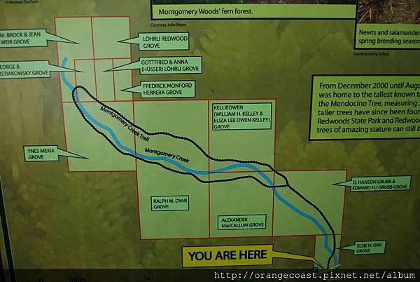 Montgomery Woods 2014-07-26 002