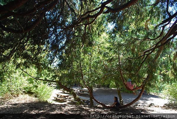 Oak Glen 2014-08-17 150