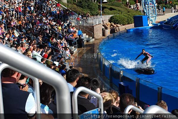 Sea World 2014-11-23 114