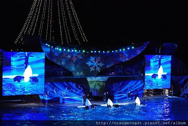 Sea World 2014-11-23 299