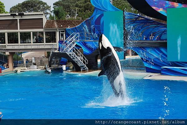 Sea World 2014-09-20 060