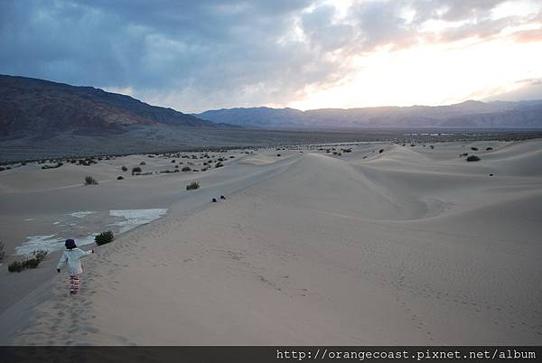 Death Valley 186