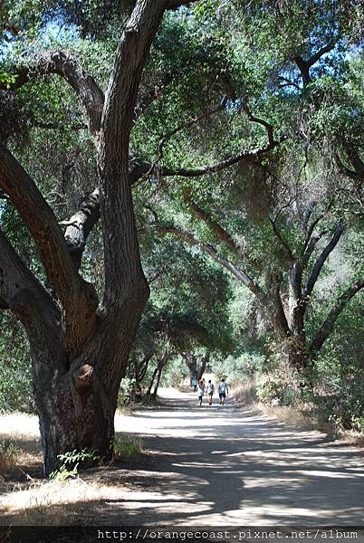 Malibu Creek 2015-09-06 032