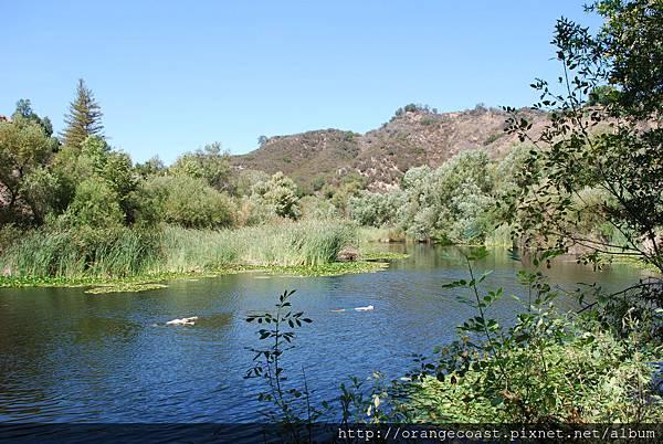 Malibu Creek 2015-09-06 150