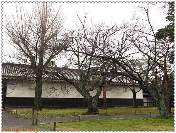 京都-082.jpg