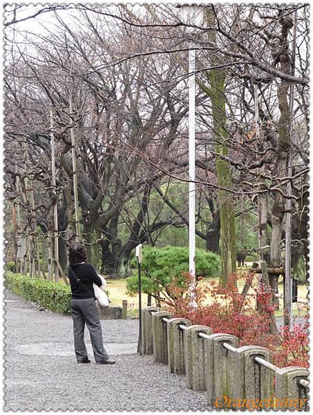 京都-083.jpg
