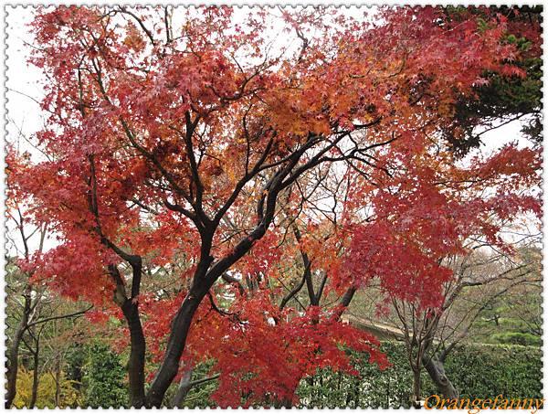京都-086.jpg