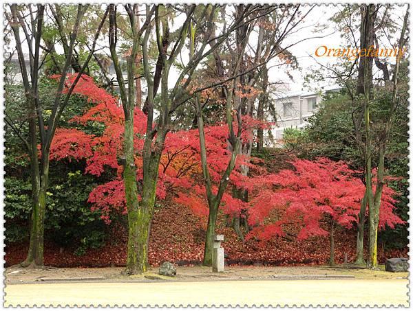 京都-090.jpg