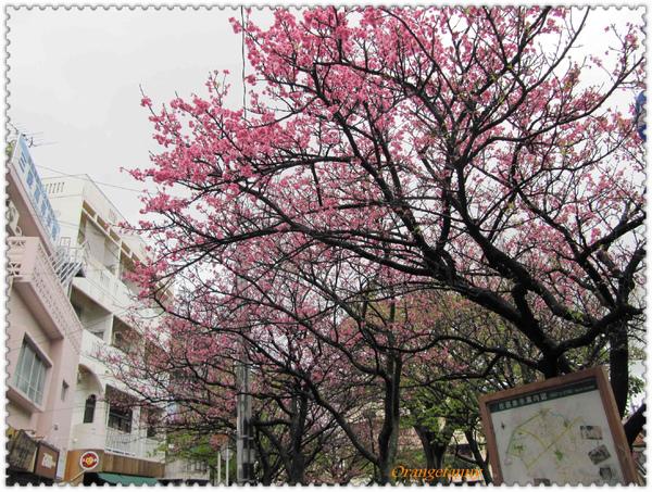 沖繩-049.jpg