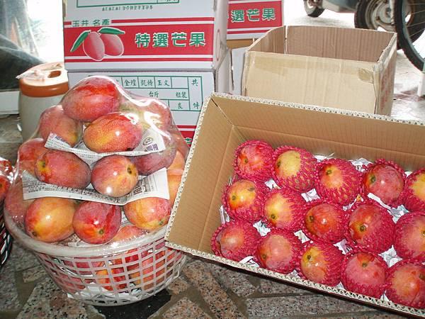 愛文芒果(包裝3)  販售期間:每年端午節~國曆8月底.JPG