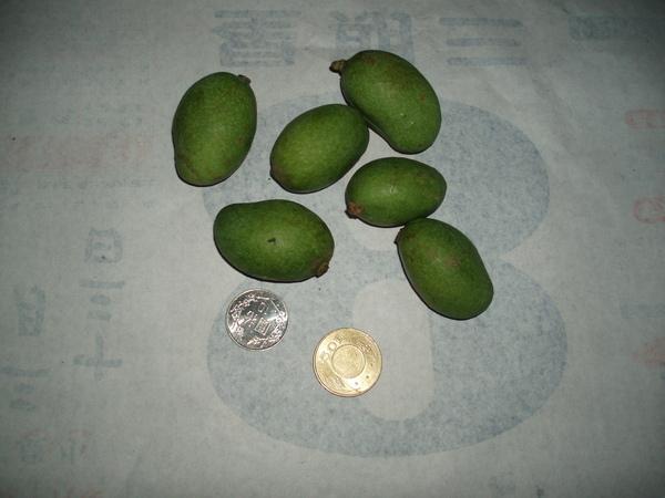 土芒果的大小
