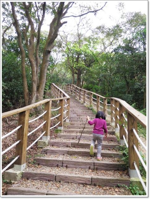 羊稠森林步道8.jpg
