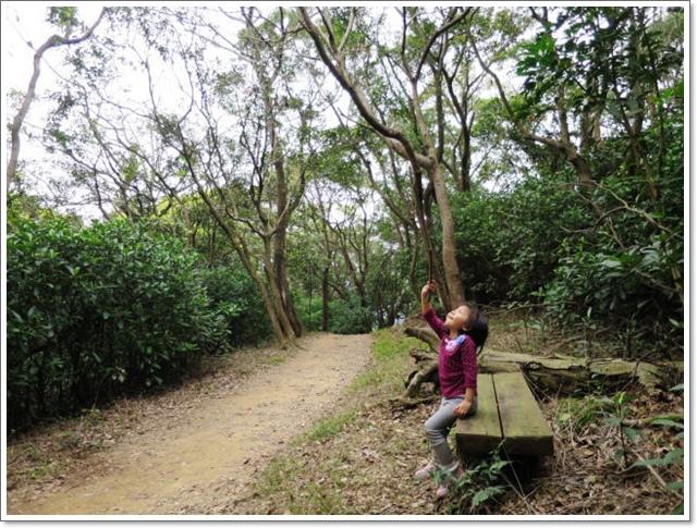 羊稠森林步道10.jpg