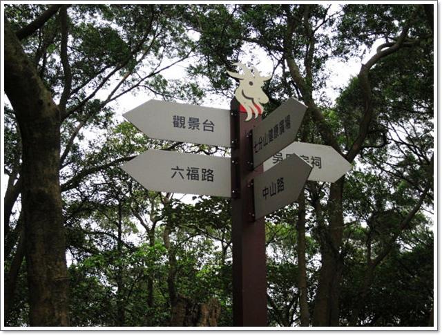 羊稠森林步道9.jpg