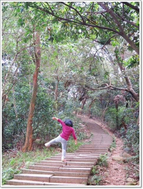 羊稠森林步道13.jpg
