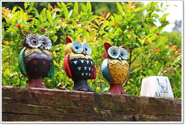 森林鳥花園18.JPG