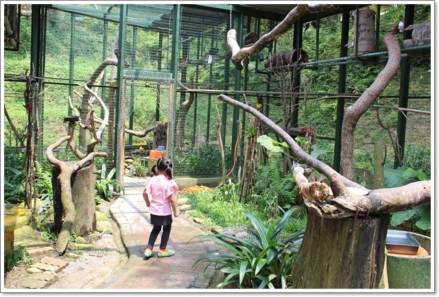 森林鳥花園20.JPG