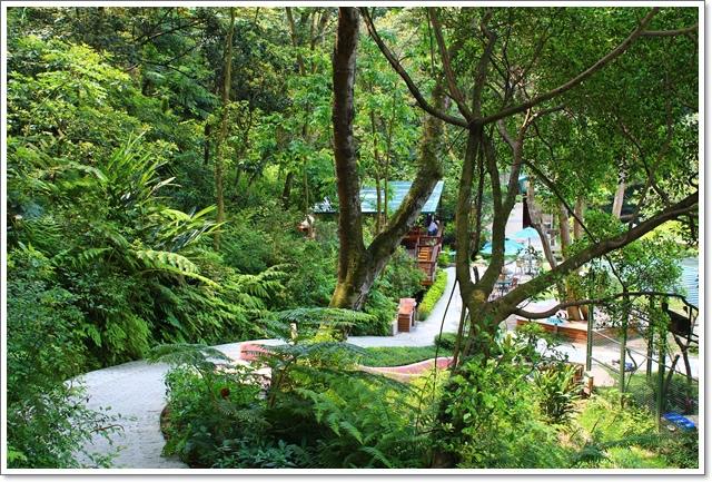 森林鳥花園26.JPG