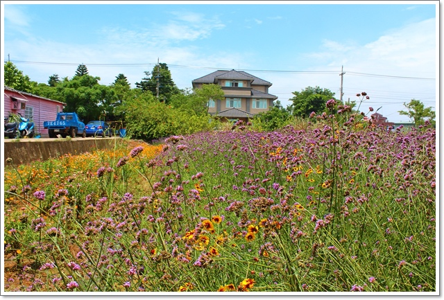 青林農場戶外教學12.JPG