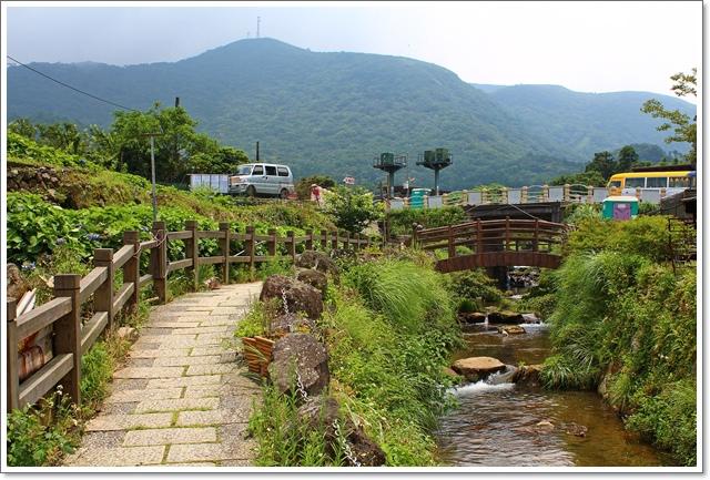 竹子湖9.JPG