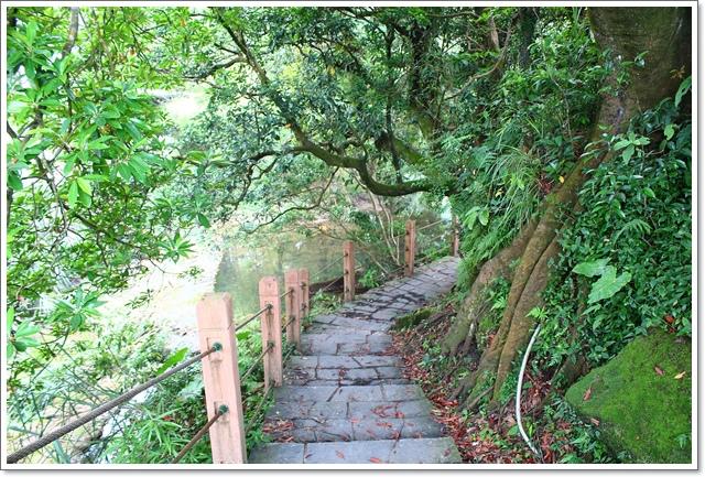 竹子湖11.JPG