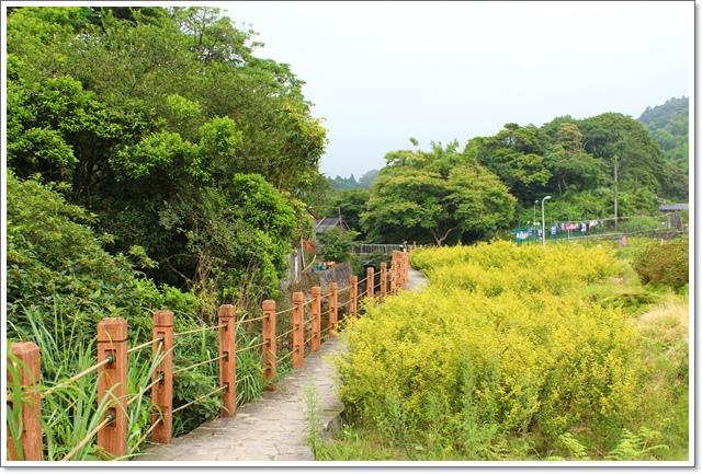 竹子湖13.JPG