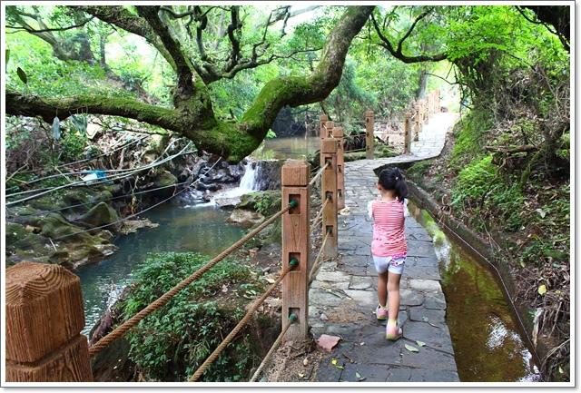 竹子湖15.JPG