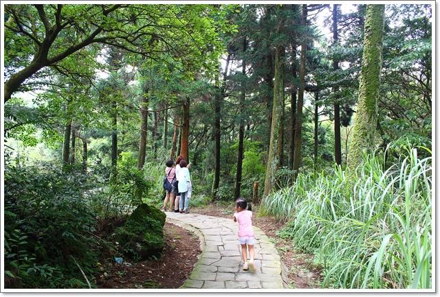 竹子湖24.JPG