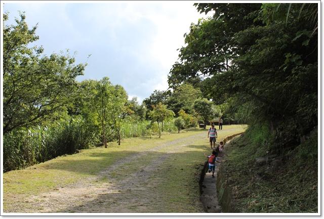 東眼山13.JPG