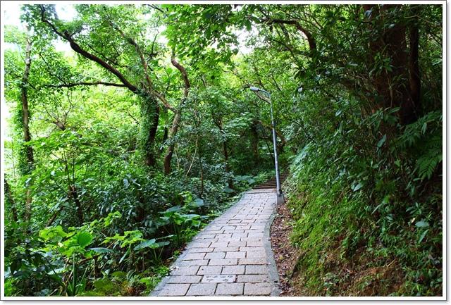 象山親山步道5.JPG