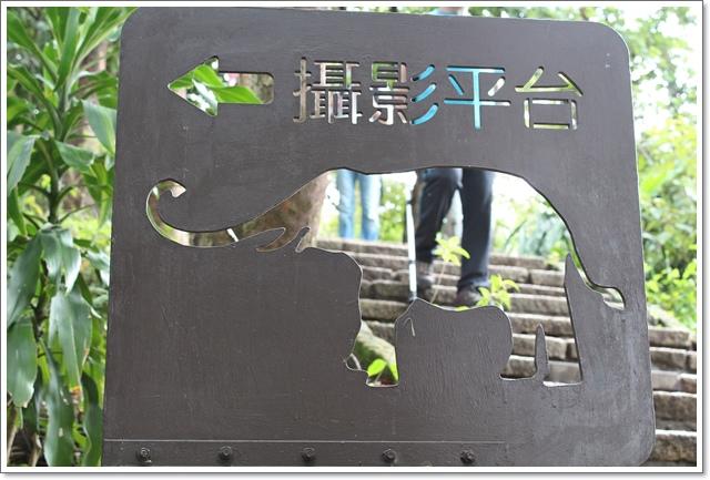 象山親山步道13.JPG