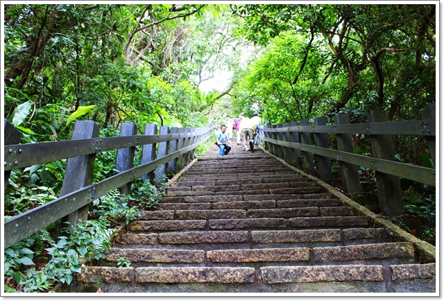 象山親山步道23.JPG