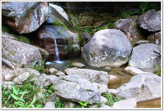 大溝溪24