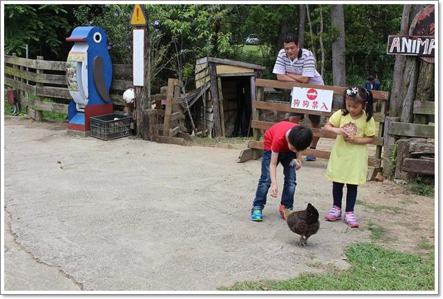 富田花園農場8.JPG