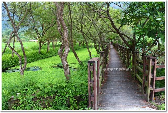 馬太鞍溼地生態園區11
