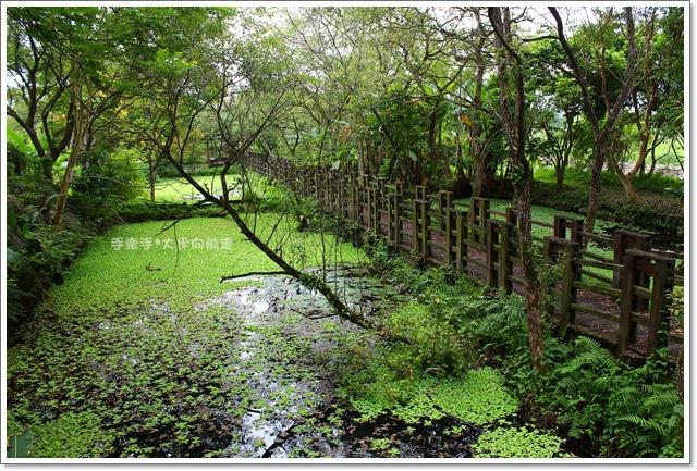 馬太鞍溼地生態園區14