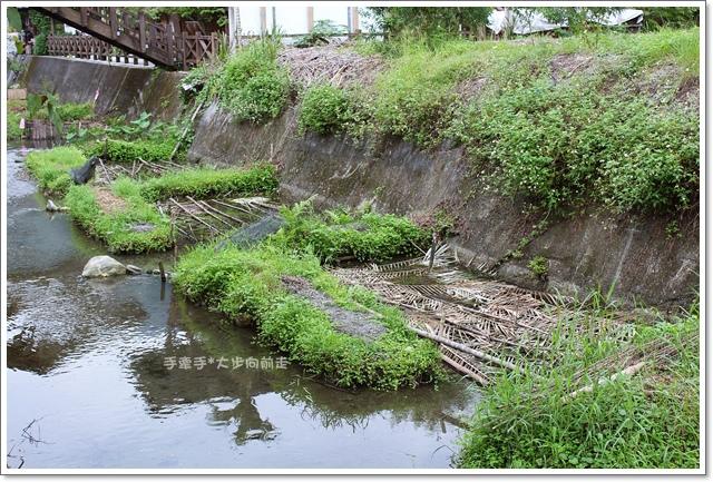 馬太鞍溼地生態園區18