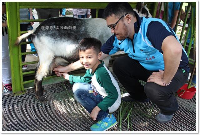 羊世界14.JPG