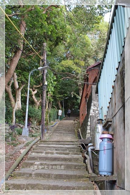 天母水管步道7.JPG