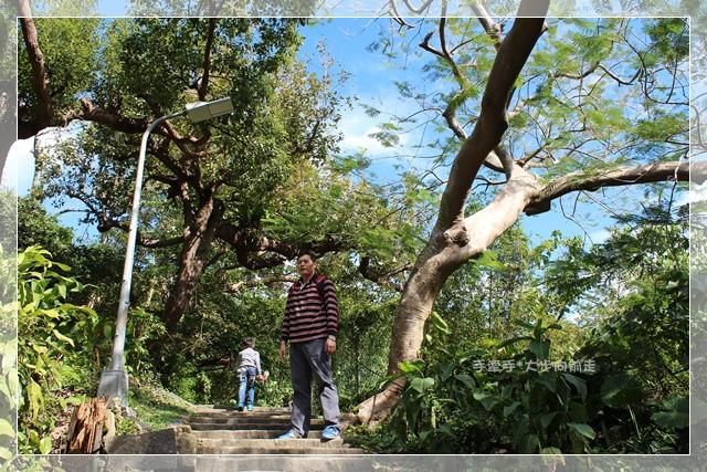 天母水管步道9.JPG