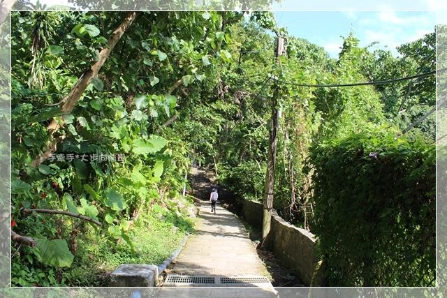 天母水管步道11.JPG