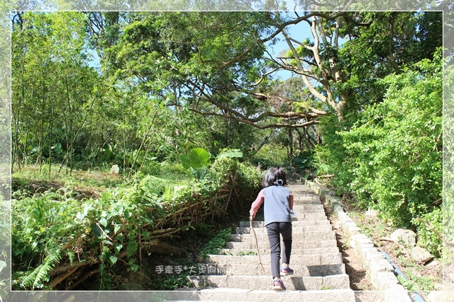 天母水管步道15.JPG