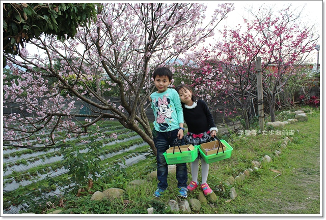 三坑自然生態公園35.JPG