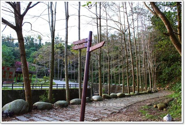 三坑自然生態公園18.JPG