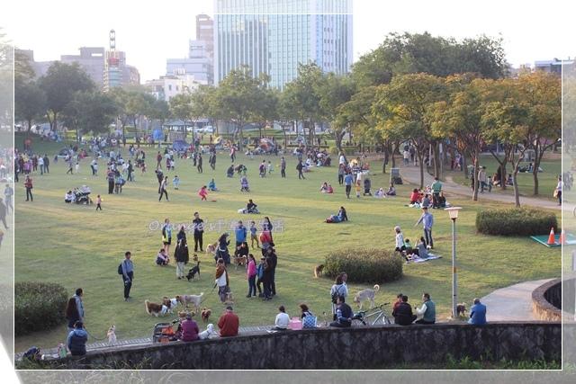 陽明運動公園7.JPG