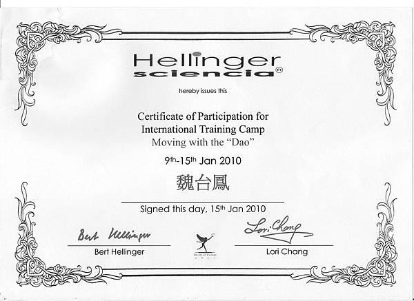 certificate Hellinger 2010.01.9-15