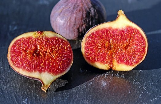 figs-1620590__340